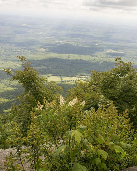 Escarpment Trail lookout.