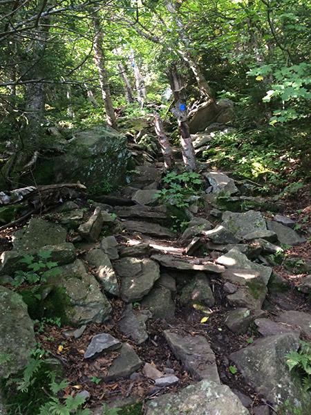 More steep rocks on the Escarpment Trail