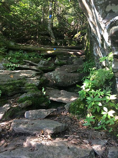 Steep rocks on the Escarpment Trail