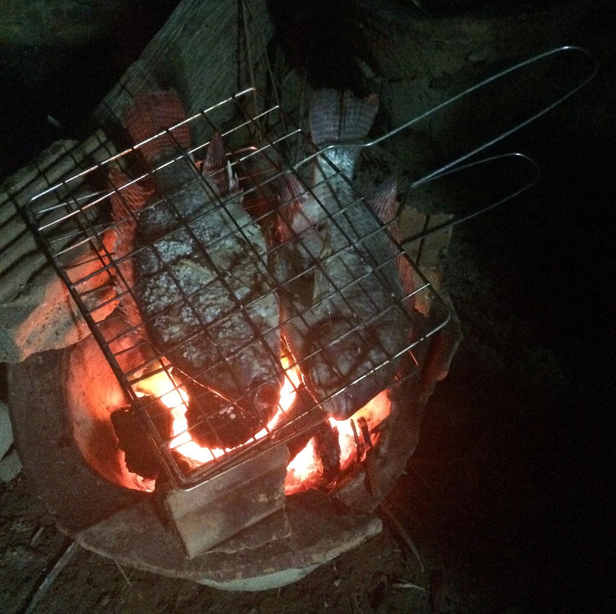 Fish roasting